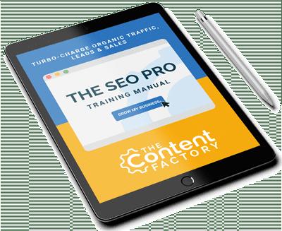The SEO Pro Training Manual